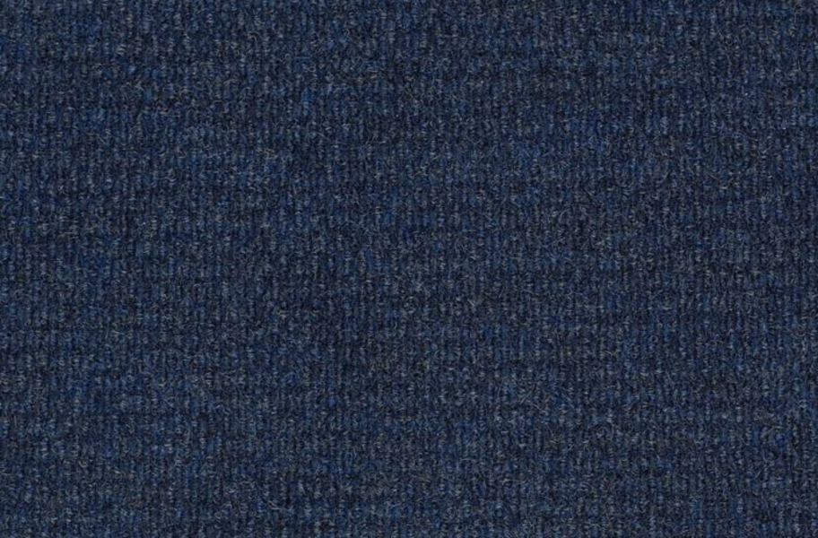 Shaw Bedecked Outdoor Carpet - Atlantic