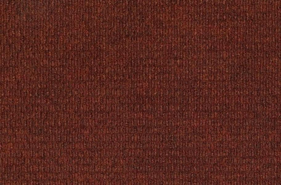 Shaw Bedecked Outdoor Carpet - Cayenne