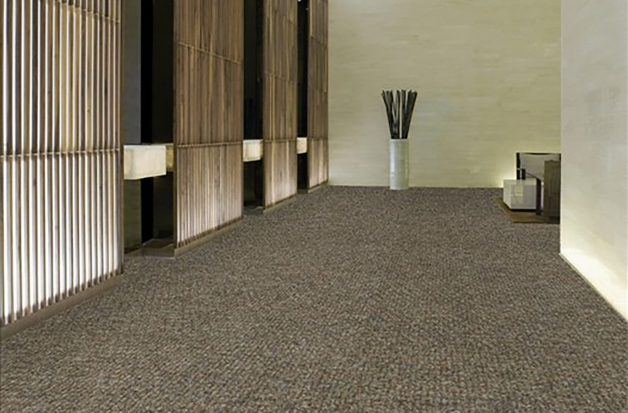 Shaw Succession II Outdoor Carpet - Sierra
