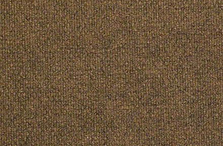 Shaw Succession II Outdoor Carpet - Hammered