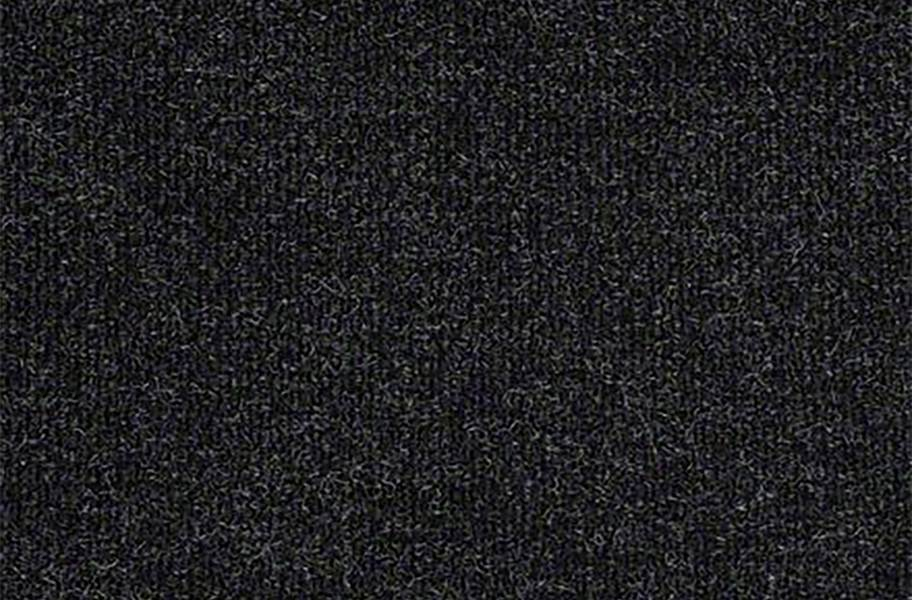 Shaw Succession II Outdoor Carpet - After Dark