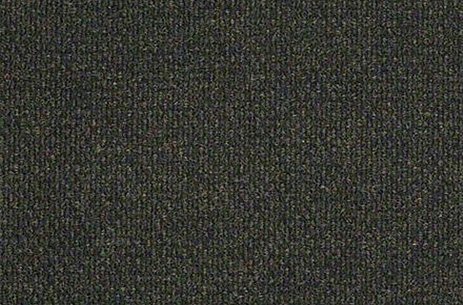 Shaw Succession II Outdoor Carpet - Crushed Olive