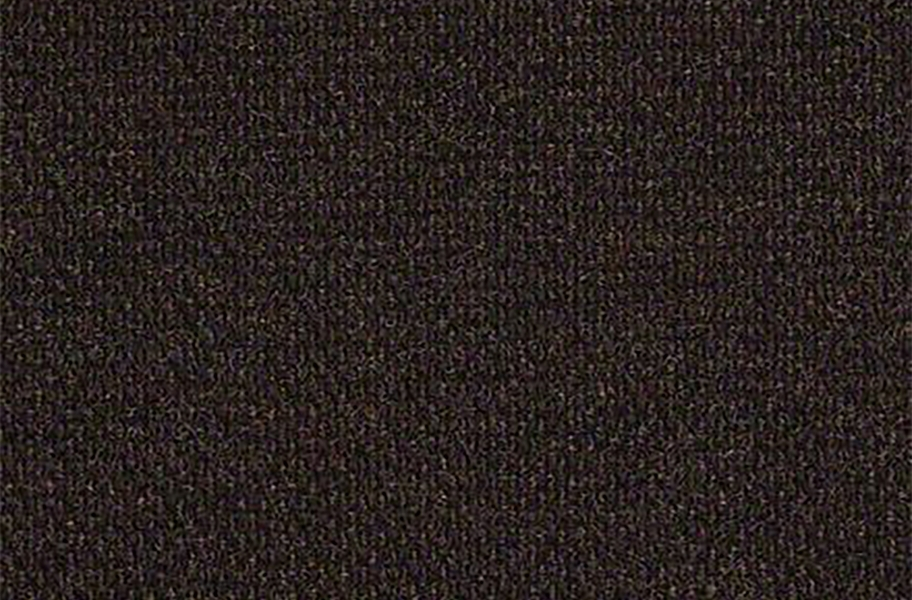 Shaw Succession II Outdoor Carpet - Dark Earth