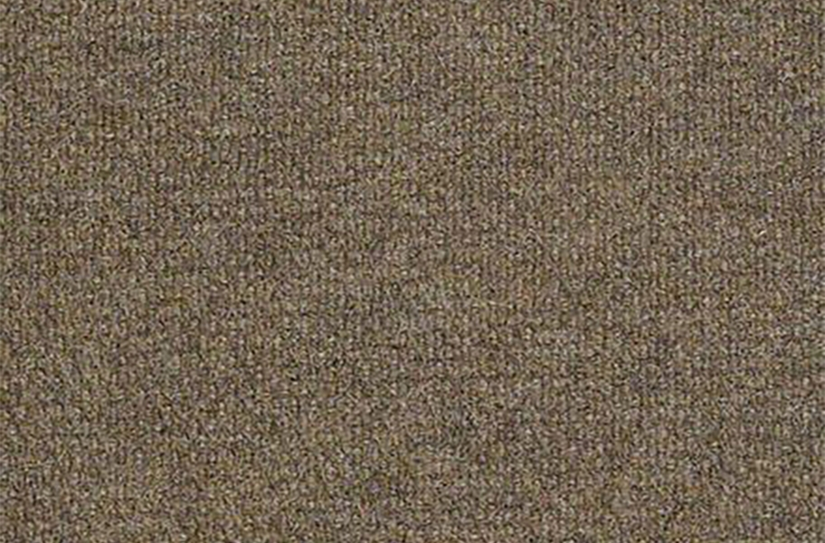 Shaw Succession II Outdoor Carpet - Sierra Sand