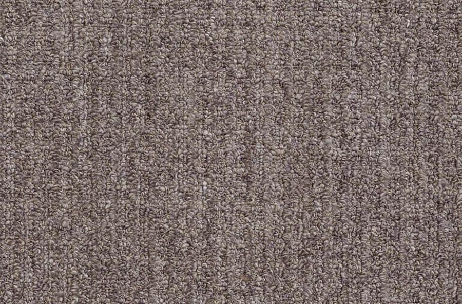 Shaw Have Fun Waterproof Carpet - Graphite
