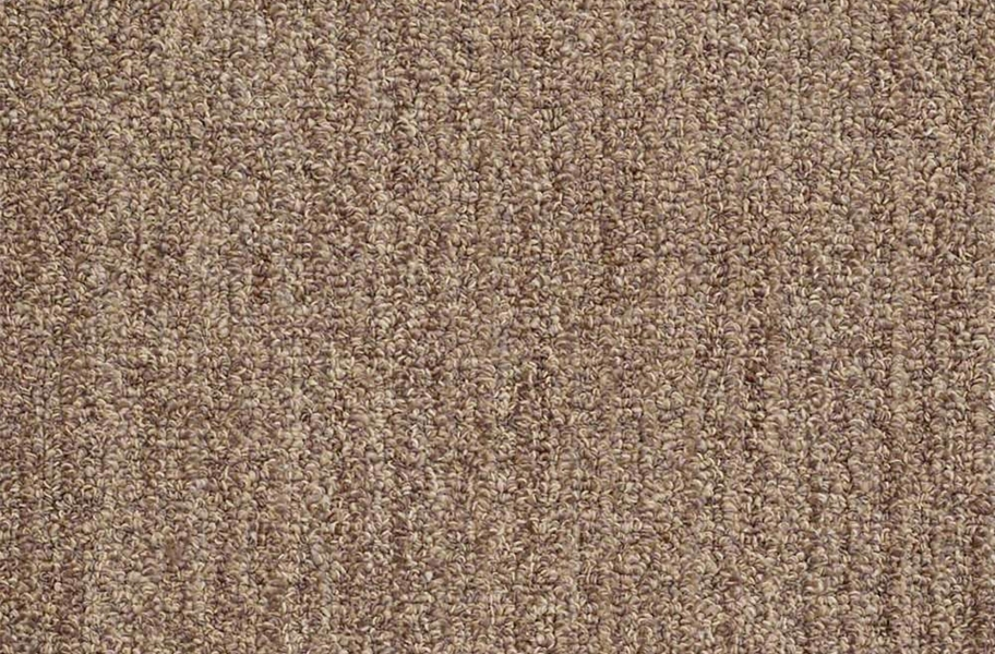 Shaw Have Fun Waterproof Carpet - Mocha