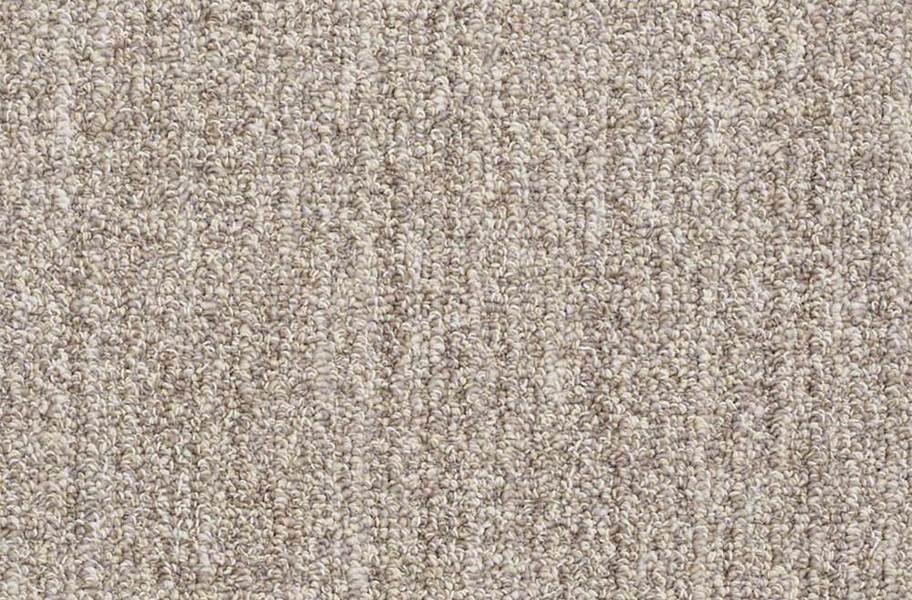 Shaw Have Fun Waterproof Carpet - Natural Grey