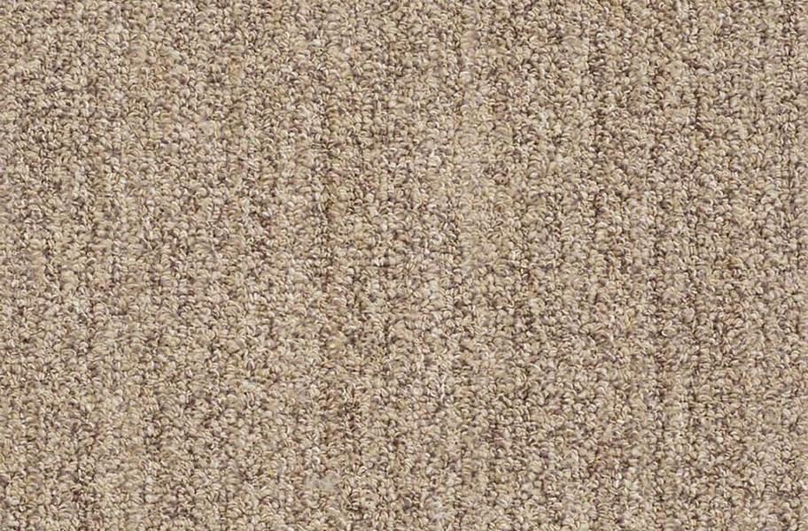Shaw Have Fun Waterproof Carpet - Taupe