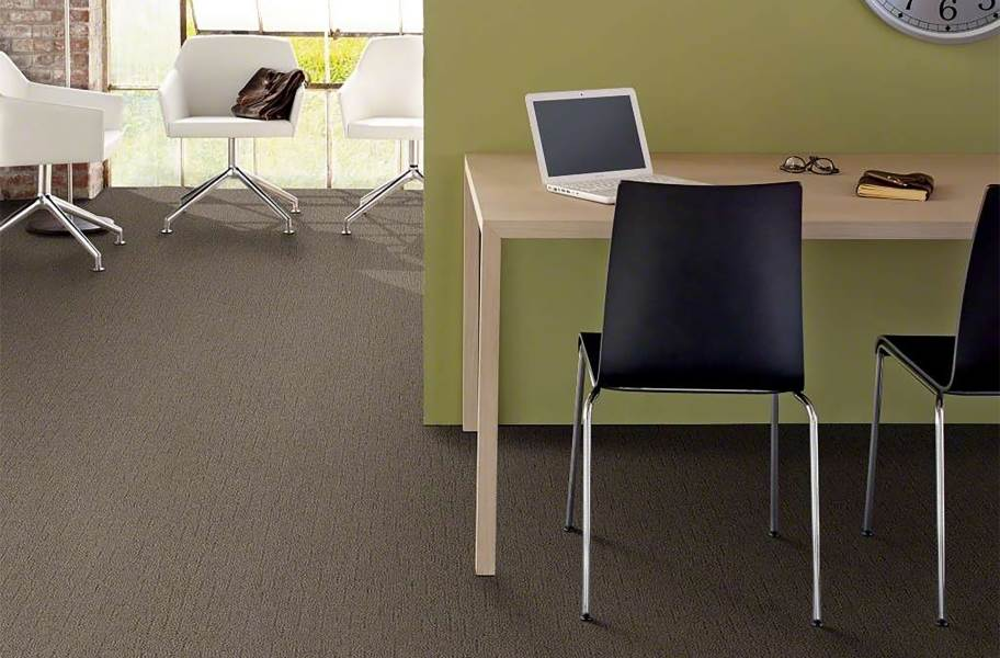 Shaw Sense of Belonging Waterproof Carpet - Stunning