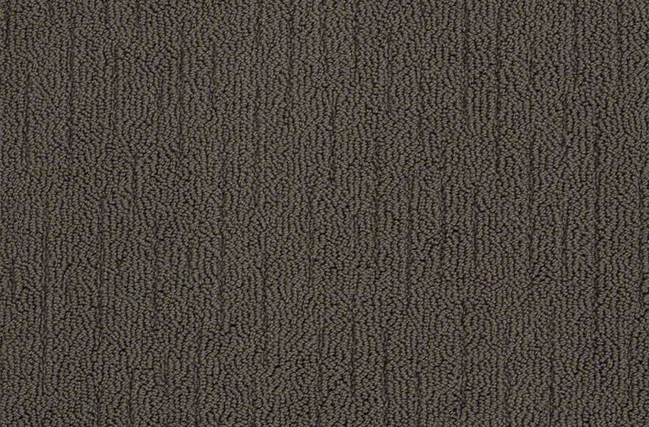 Shaw Sense of Belonging Waterproof Carpet - Plantation
