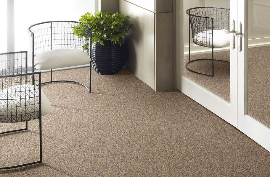 Shaw Have Fun Waterproof Carpet - Taupe