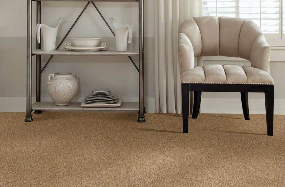 Shaw Have Fun Waterproof Carpet - Honey