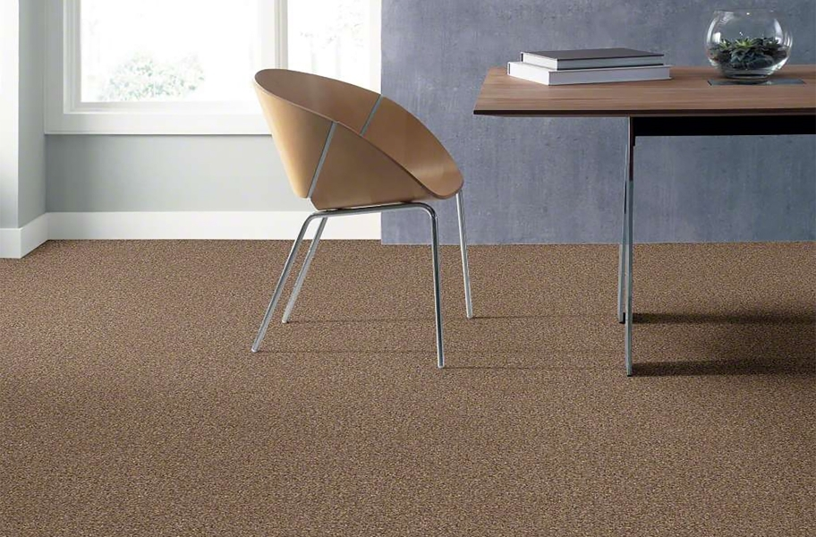 Shaw Have Fun Waterproof Carpet - Mocha
