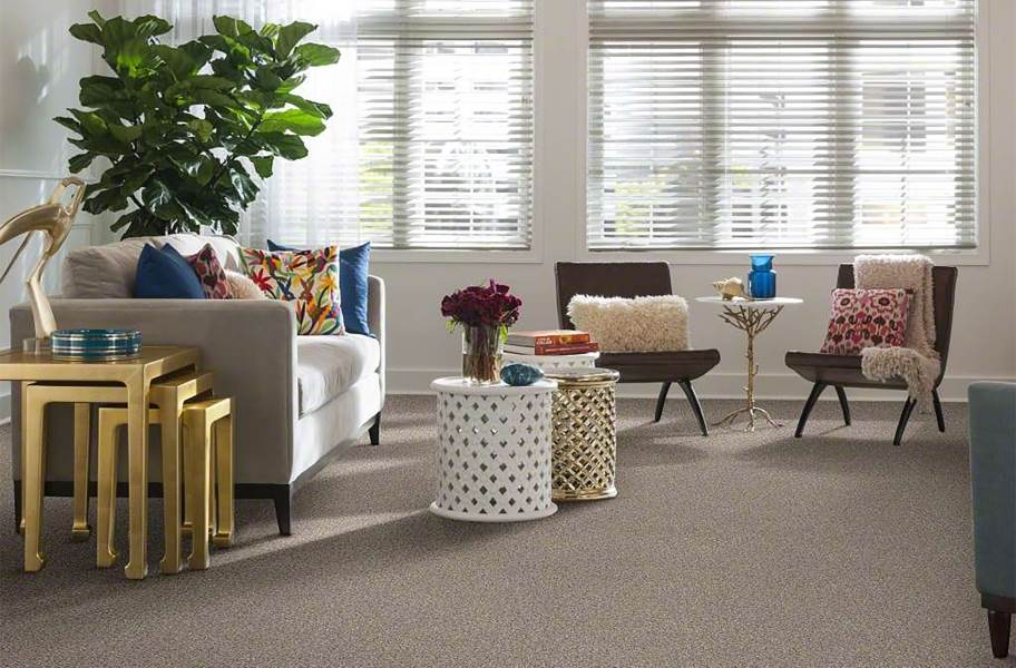 Shaw Have Fun Waterproof Carpet - Natural Grey