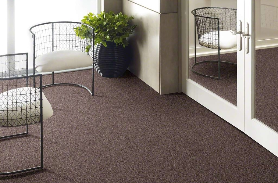 Shaw Have Fun Waterproof Carpet - Slate