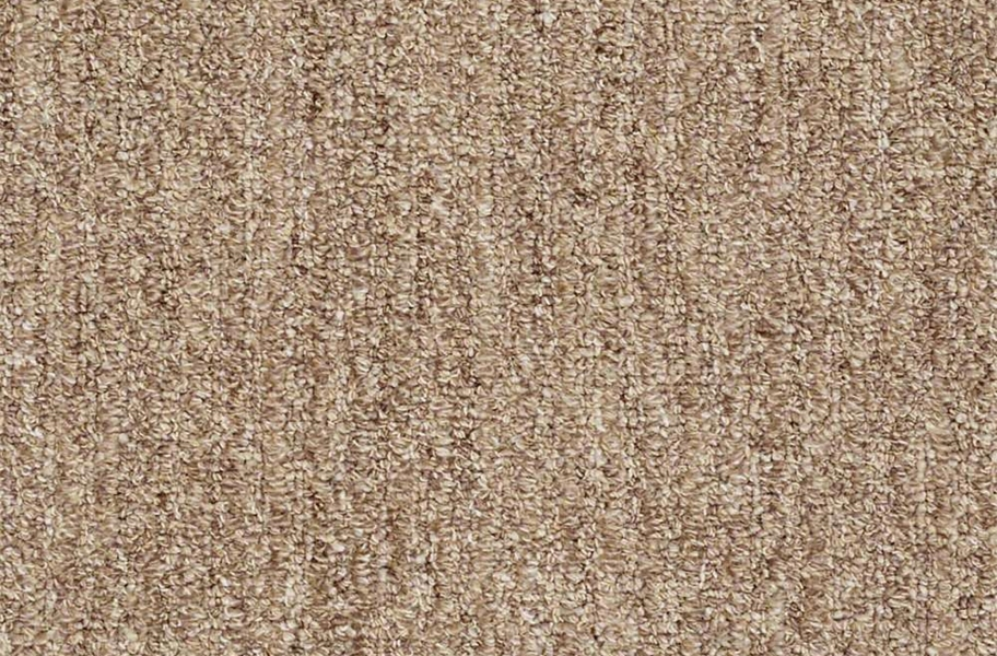 Shaw Have Fun Waterproof Carpet - Classic Tan