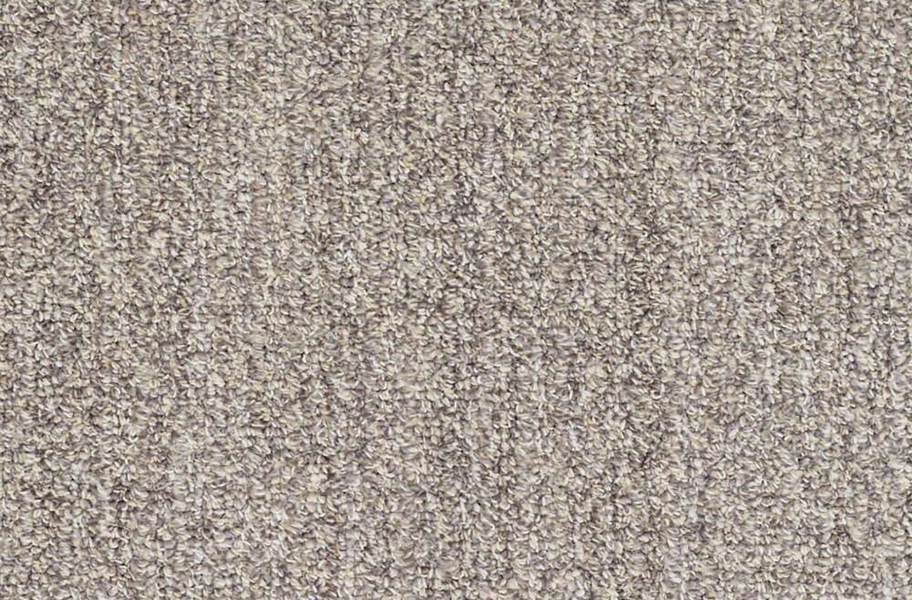 Shaw Have Fun Waterproof Carpet - Platinum