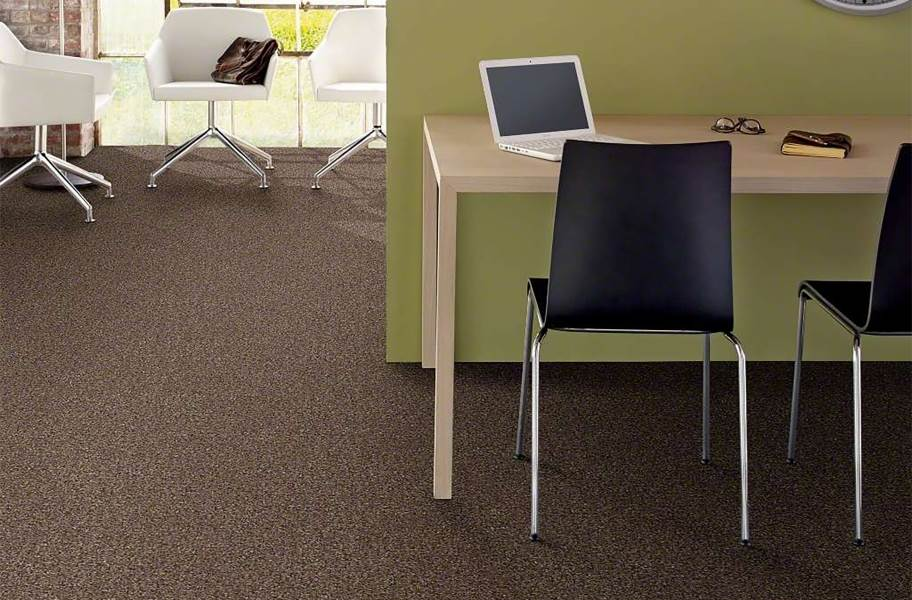 Shaw Have Fun Waterproof Carpet - Coffee