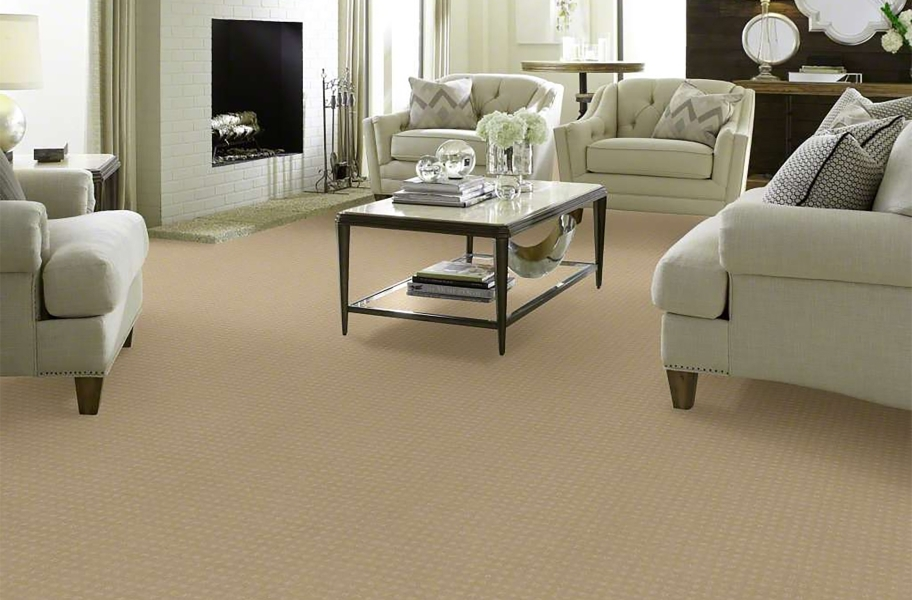 Shaw Creating Possibilities Waterproof Carpet - Creative