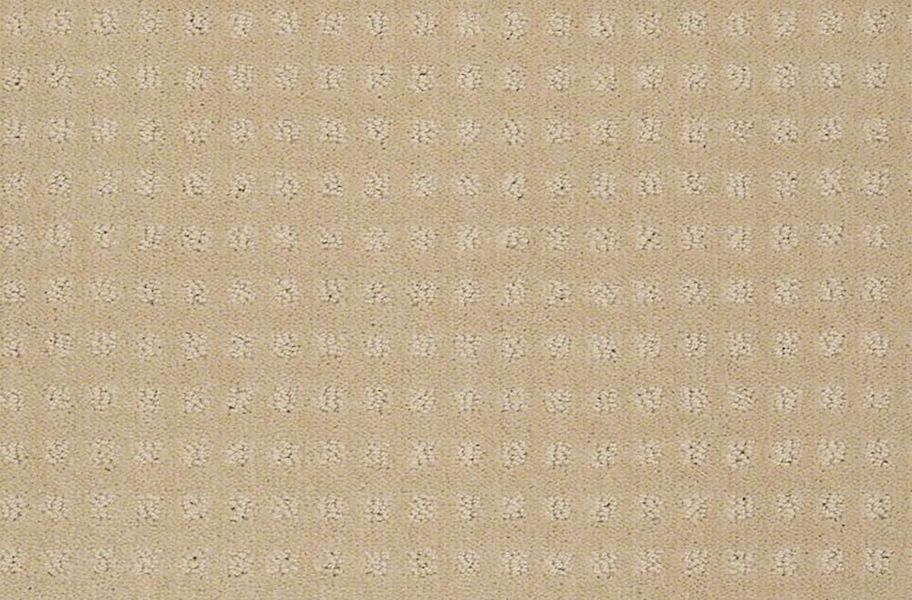 Shaw Creating Possibilities Waterproof Carpet - Chic