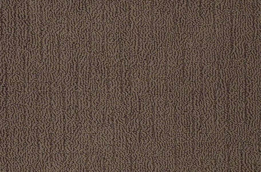 Shaw Sense of Belonging Waterproof Carpet - Couture