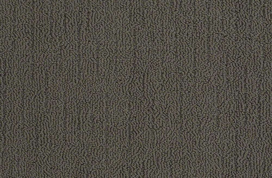 Shaw Sense of Belonging Waterproof Carpet - Estate
