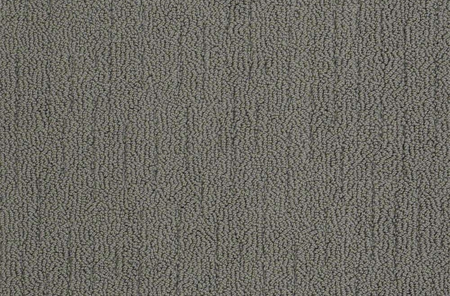 Shaw Sense of Belonging Waterproof Carpet - Grandeur