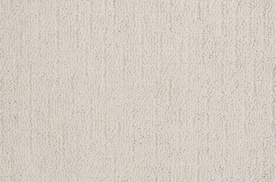 Shaw Sense of Belonging Waterproof Carpet - Luxury