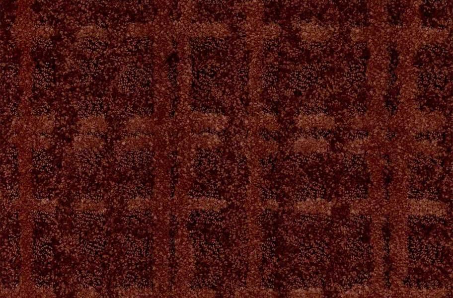 Shaw Pure Envy Carpet - Terrazzo