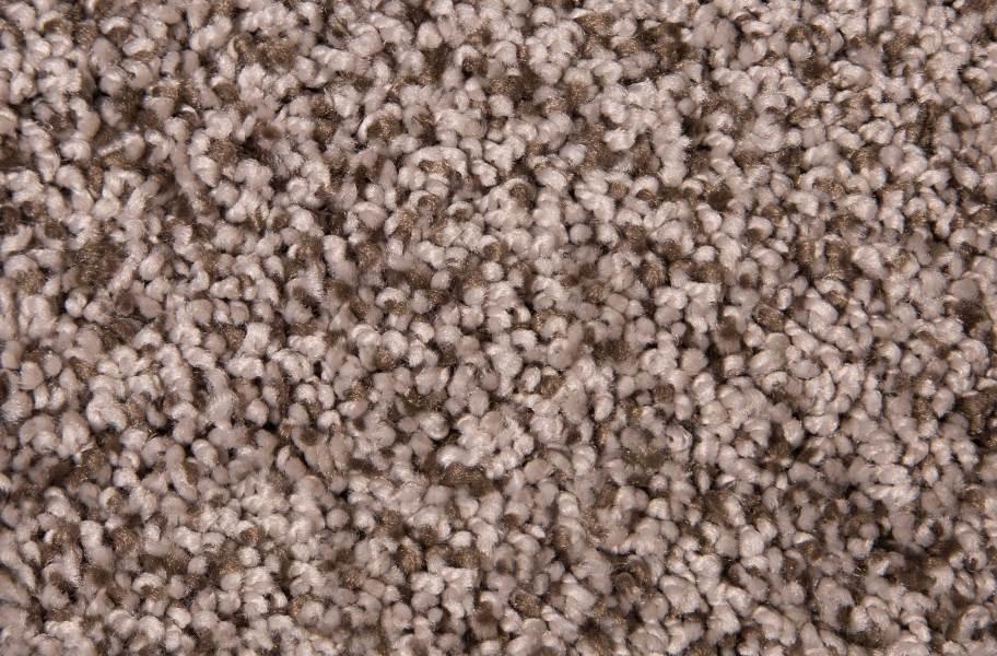 Air.o Fresh Start I Carpet with Pad - Tallow