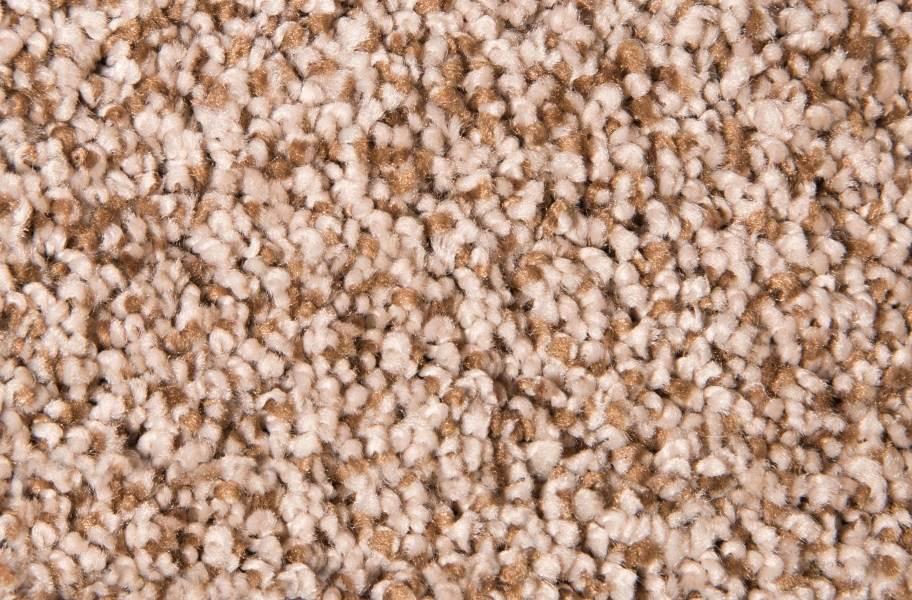 Air.o Fresh Start I Carpet with Pad - Wagon Trail