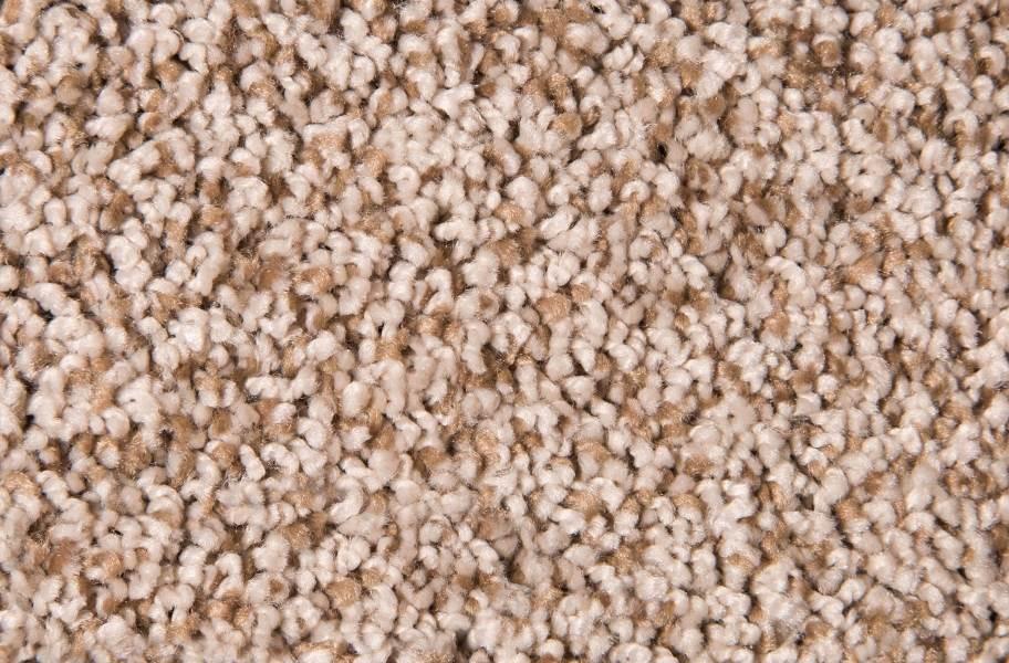 Air.o Fresh Start I Carpet with Pad - Warm Honey