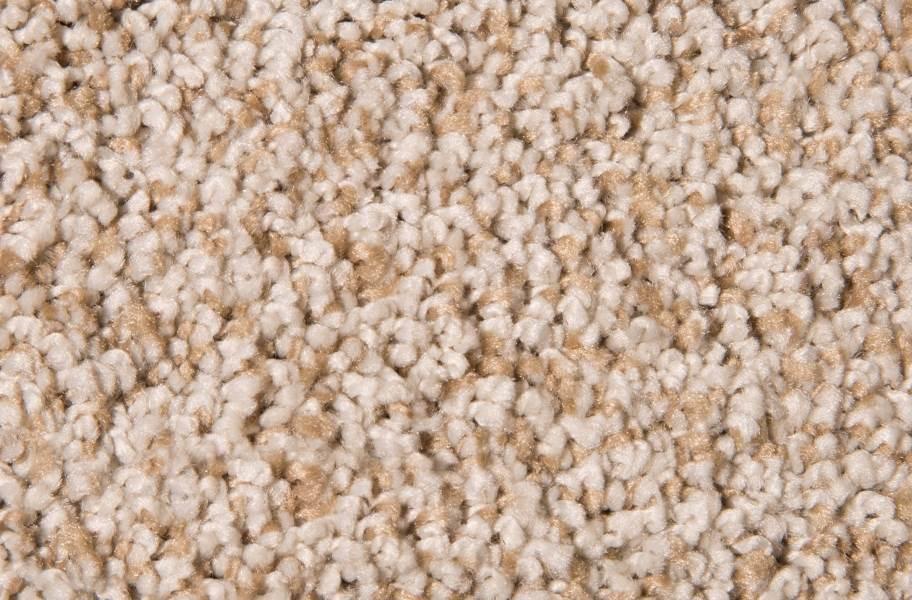 Air.o Fresh Start I Carpet with Pad - Light Safari