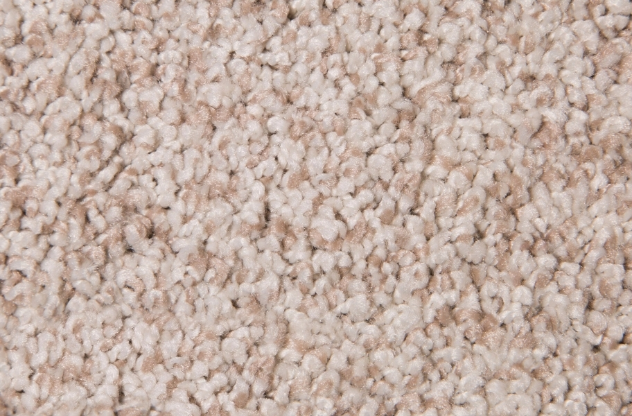 Air.o Fresh Start I Carpet with Pad - Tumbleweed