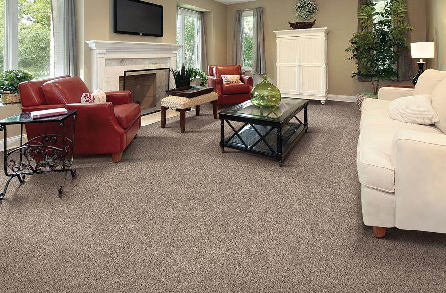 Air.o Gentle Breeze Carpet with Pad