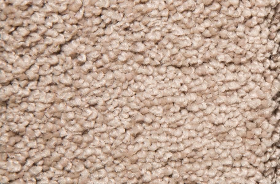 Air.o New Beginnings I Carpet with Pad - Gazebo
