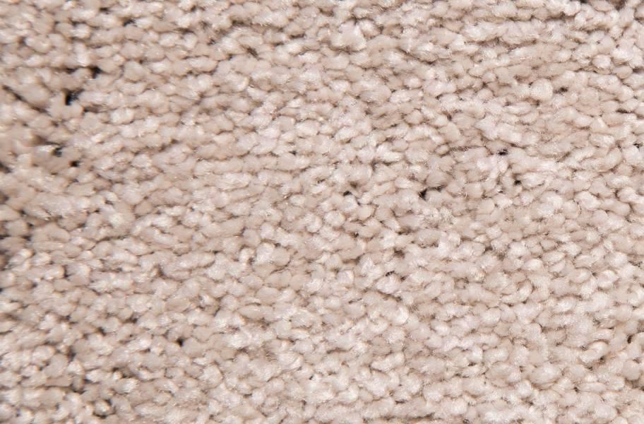 Air.o New Beginnings I Carpet with Pad - Nouveau
