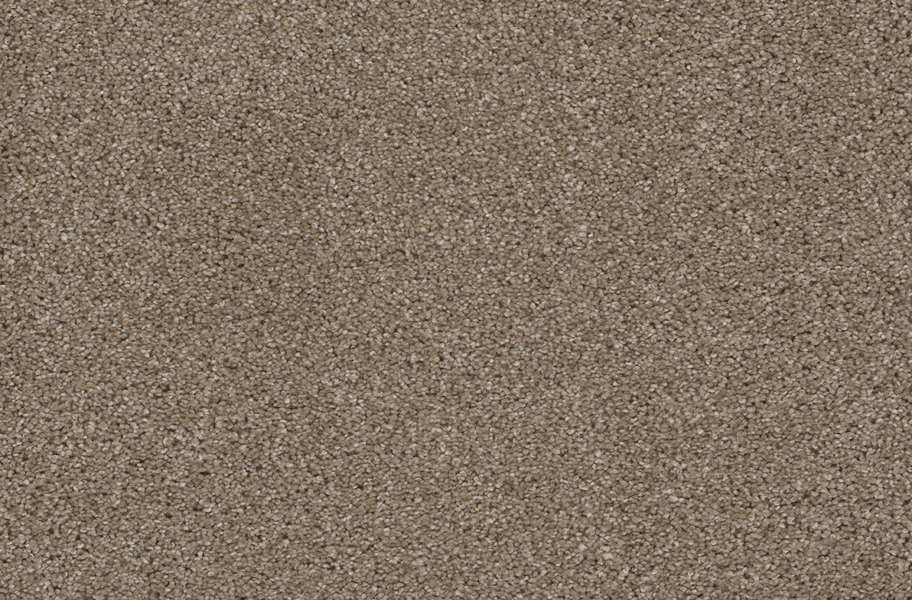 Easy Street Carpet Tile with Pad - Acorn