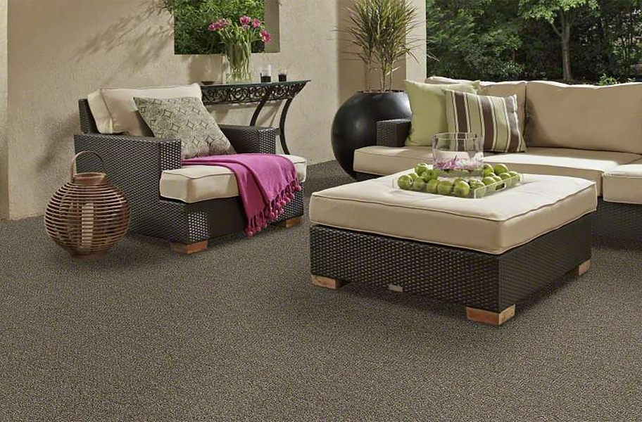 Shaw Natural Path Outdoor Carpet - Mineralite