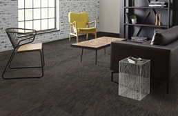 Shaw Document Carpet Tiles