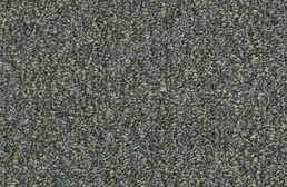 Shaw Gardenscape Outdoor Carpet