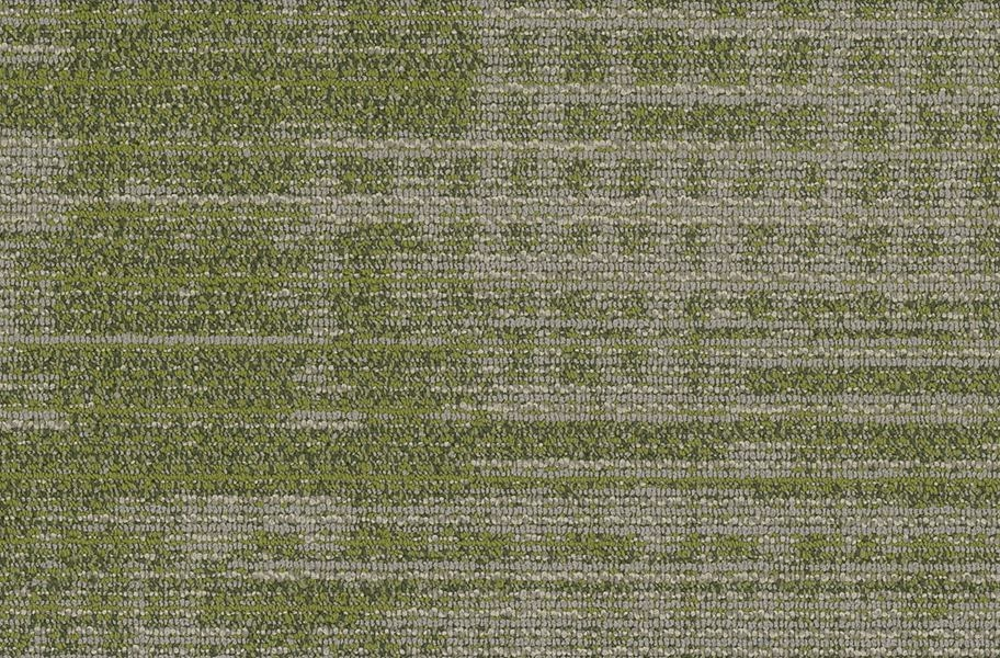 Shaw Harmony Carpet Planks - Emphasis