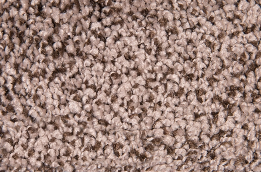 Air.o Fresh Start I Carpet with Pad - Longhorn