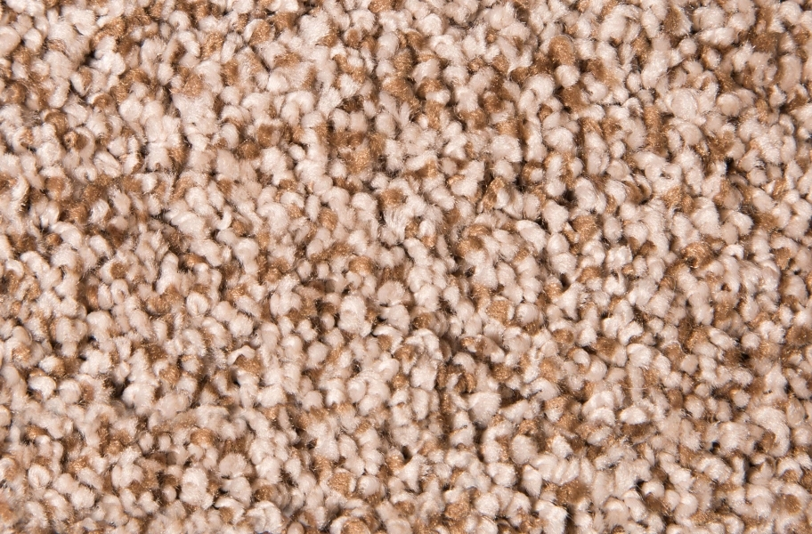 Air.o Fresh Start I Carpet with Pad - Oasis Sand