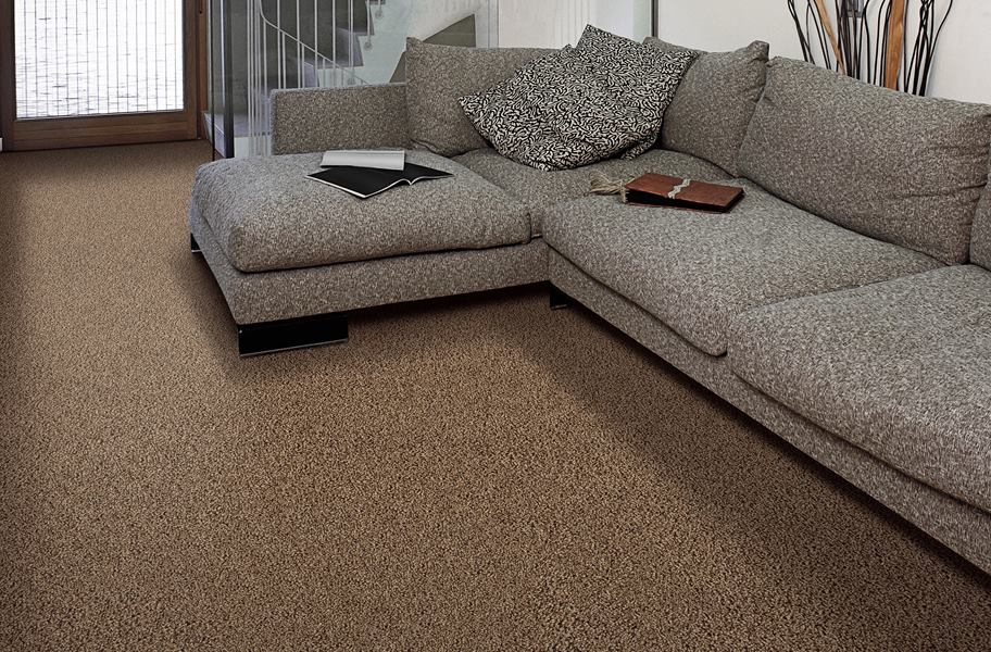 Air.o Fresh Start I Carpet with Pad