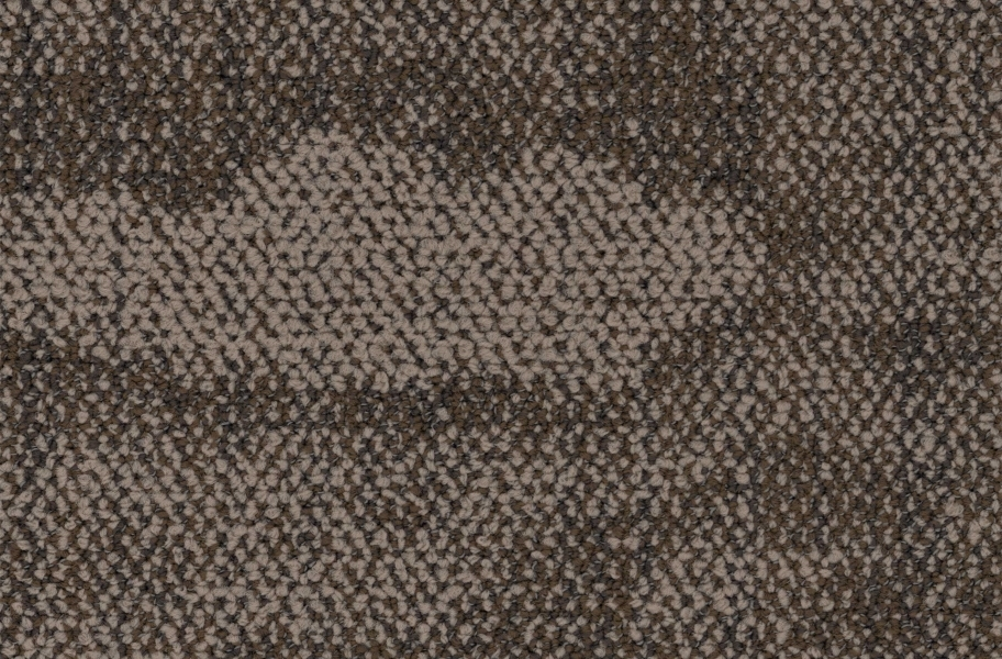 EF Contract Blot Carpet Planks - Rooted