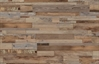 COREtec Plus Enhanced Waterproof Planks - Galathea Oak