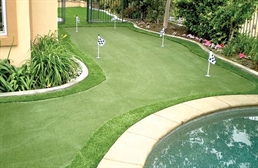 Premium Putting Green Turf Rolls