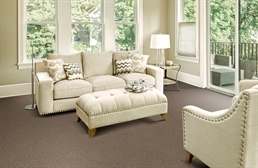Piece of Cake Carpet Tile with Pad