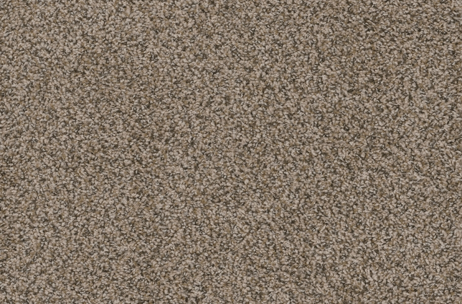 Walk in the Park Carpet Tile with Pad - Gemstone